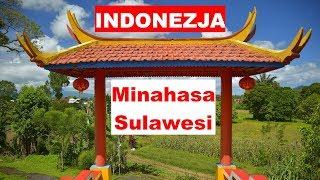 Ciekawostki Minahasa (Celebes)
