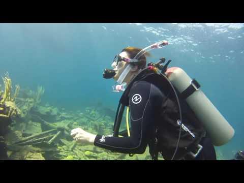 Scuba Diving @ Bermuda   2015