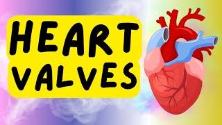Heart Valves - Atrioventricular Valves - Semilunar Valves - Tricuspid - Bicuspid