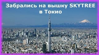 Как мы забрались на вышку Skytree в Токио(≧◡≦) Достопримечательности Японии(Привет! Сегодня мы побывали еще в одной достопримечательности Японии - Tokyo Skytree. Токио Скай Три — это новейша..., 2017-02-21T15:00:02.000Z)