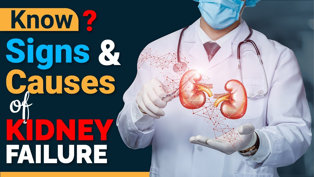Know Signs and Causes of Kidney Failure