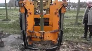 видео Плодово-ягодные саженцы в Иркутске. Питомник Шичалина