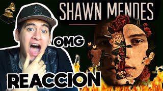 Baixar Shawn Mendes - Shawn Mendes | ALBUM REACCION