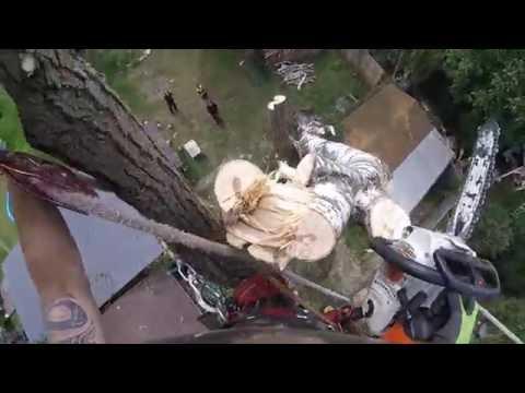 Sturmschadenbeseitigung - Videodukumentation -Hohen Neuendorf 29.8