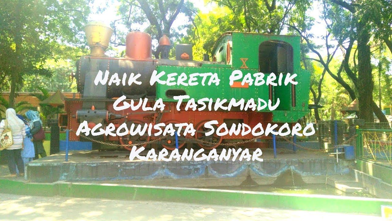 Naik kereta Pabrik Gula Tasikmadu di Agrowisata Sondokoro Karanganyar