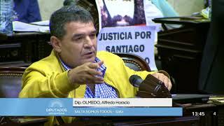 Diputado Olmedo Alfredo Horacio - Sesión 25-10-2017 - PL