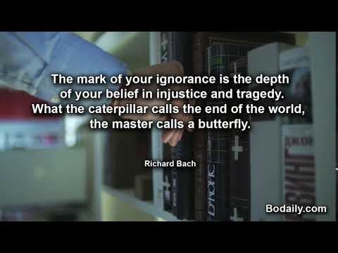 The mark of your ignorance is the depth of your belief in injustice and tragedy What the caterpillar