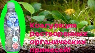 Одна из причин плохого роста аквариумных растений! Выводим органику Гиацинтом#Аквариумные растения]