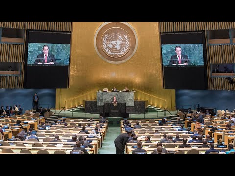 Watch: U.N. hosts emergency session on Trump's Jerusalem dec