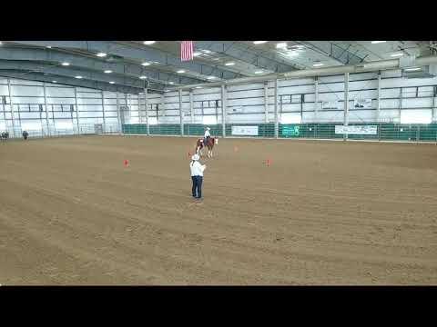4-H Western Horse Show 3-Part 2 at 2020 Lancaster County Super Fair