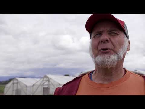 Fearing Loss of Skilled Labor, Washington Farmers Safeguard Migrant Workers