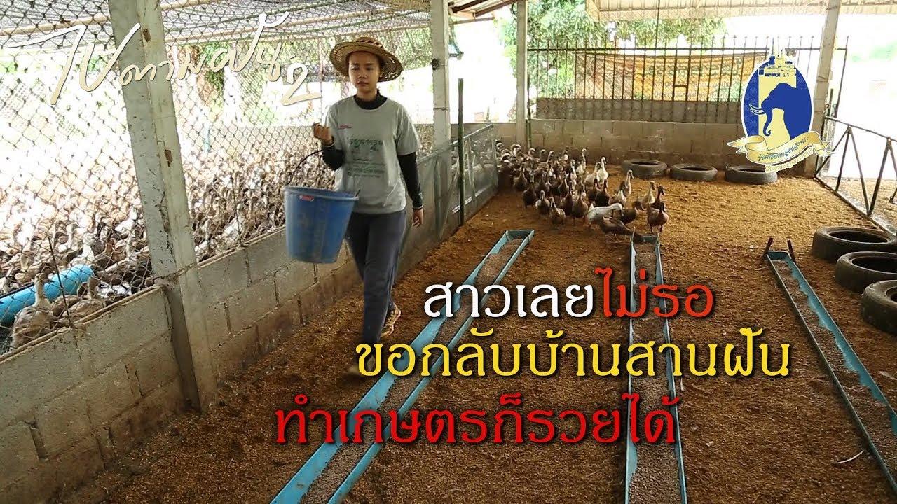 สาวเลยไม่รอ กลับบ้านสานฝัน ทำเกษตรก็รวยได้ | #ไปตามฝัน2