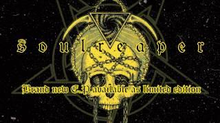 ELVENSTORM - Sworn to the Dark