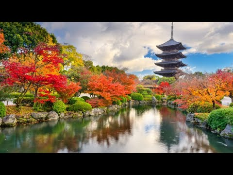 Views From KYOTO ( 京都市) JAPAN || Explore Japan || Tourist Attractions In Japan || Exploring Kyoto ||