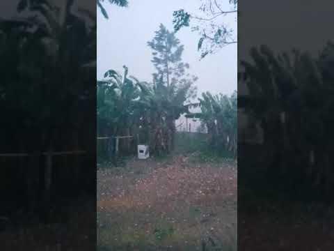 chuva de granizo SC