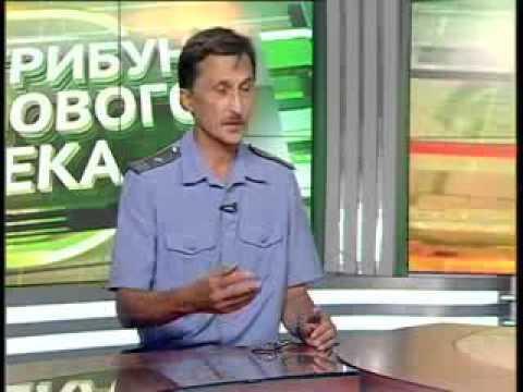 О резком увеличении численности горностаевой яблоневой моли в Татарстане