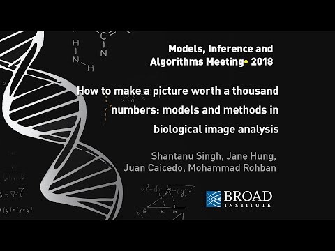 MIA: Singh, Hung, Caicedo, Rohban, Models and methods in biological image analysis