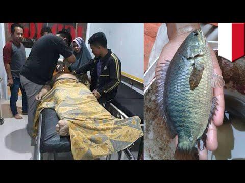 Ikan Betok Masuk Ke Dalam Tenggorokan Pria Saat Memancing - TomoNews