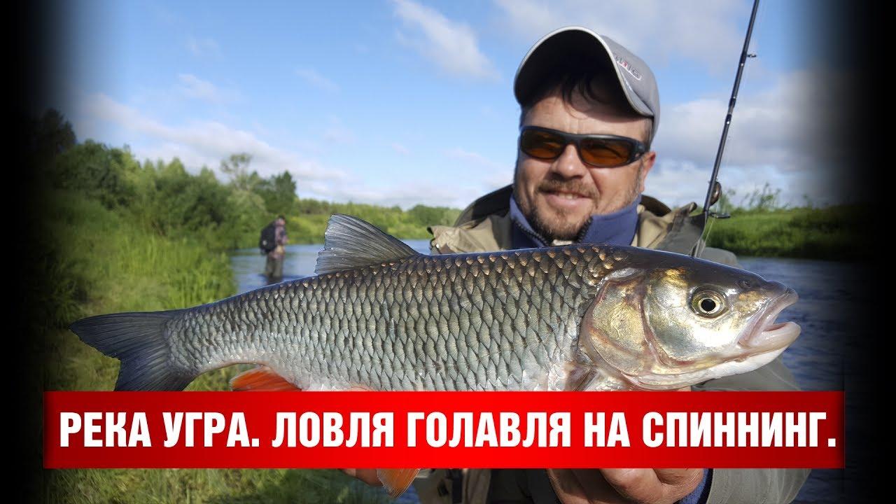 рыбалка на спиннинг река белая