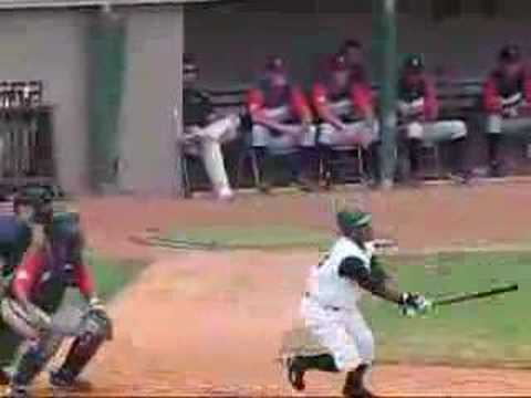 Savannah Sand Gnats' Offense