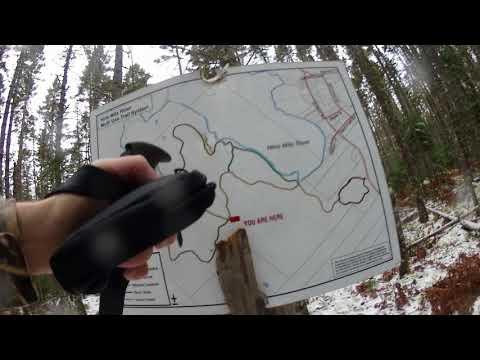 Nine Mile River Trail and logging roads - Nine Mile River, Nova Scotia Canada