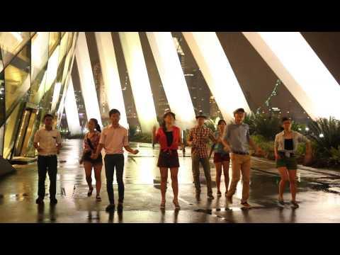 Raffles Institution Y5-6 Orientation 2014 Batch Dance Music Video