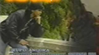 DARIO Y SU GRUPO ANGORA - ME ESTOY ENAMORANDO