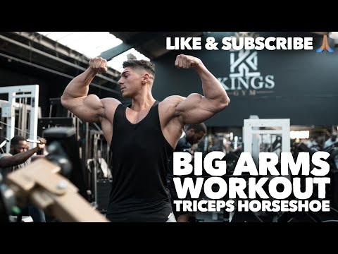 Andrei Deiu BIG ARMS (Alien Triceps) *Full Workout*
