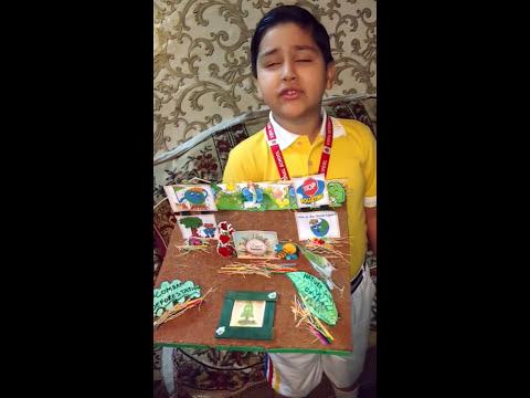 Poem Recitation Competition, Nature Theme, Winning Performance, Mother Nature Poem, School Activity