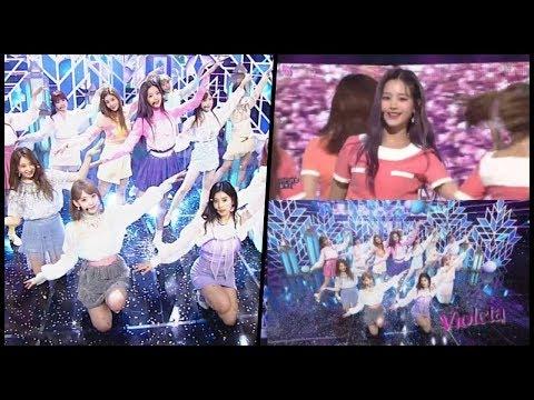 izone,-'inkigayo'-comeback...-a-fairy-like-performance-'violeta'