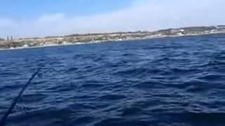 Stranded Deep Free Download Torrent Скачать Бесплатно Торрент [Торрент Игра Морская Рыбалка]