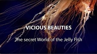 ► Vicious Beauties - The Secret World Of The Jelly Fish (Full Documentary, HD)