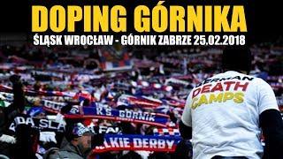 Śląsk Wrocław - GÓRNIK ZABRZE 25.02.2018