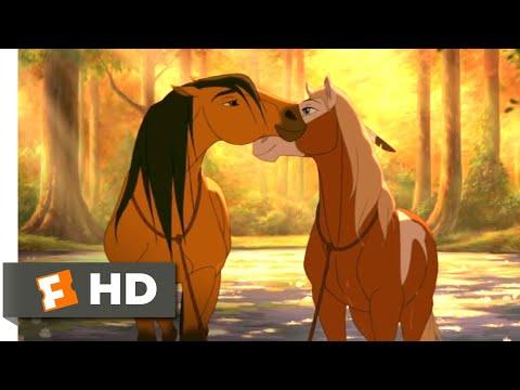 Spirit (2002) - Horses In Love Scene (5/10) | Movieclips