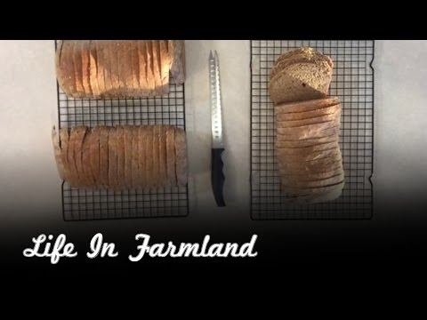 Easy 100 % Whole Wheat Bread In 60 Minutes
