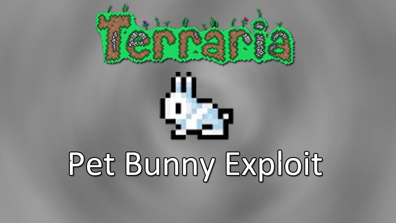 how to make bunny hood terraria