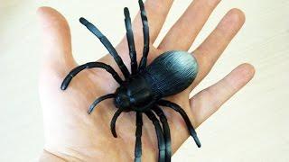 Павук Чорна вдова розпакування іграшок - Павуки і жуки - Мультик про іграшки