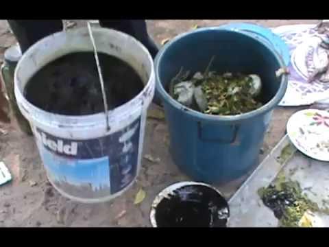 น้ำหมักเศษผักบำรุงพืช ผัก ผลไม้