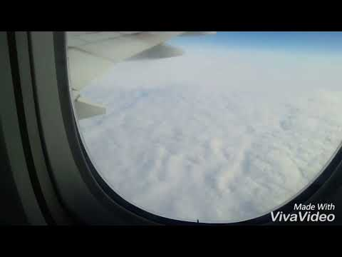 Way To India To USA Flight View