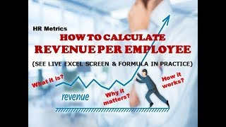 How to Calculate Revenue Per Employee | HR Metrics | HR Dashboard | HR Analytics | HR Reports | MIS