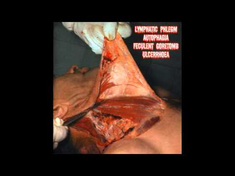 Lymphatic Phlegm / Autophagia / Feculent Goretomb / Ulcerrhoea - 4-Way Split CD FULL ALBUM (2002)