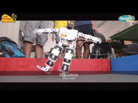 Summer robots 2