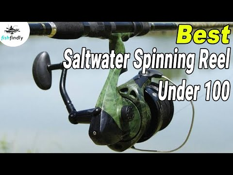 Best Saltwater Spinning Reel Under 100 In 2020 – Cheapest & Highly Recommended!