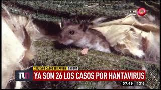 Ascendieron a 26 los casos de hantavirus confirmados