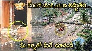 Tortoise Saves KERALA People in Rains | Miracles in KERALA Rains | Tollywood Nagar