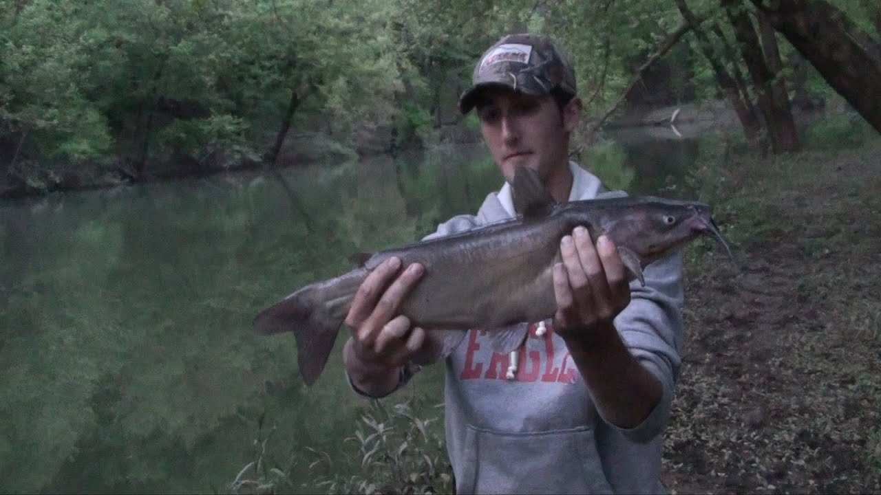 Night fishing for catfish 2012 youtube for Fishing youtube channels
