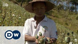 Opium Farmers in Myanmar | Journal Reporters