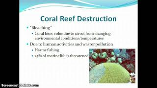 Video resources and human impacts on earth systems download MP3, 3GP, MP4, WEBM, AVI, FLV Agustus 2018