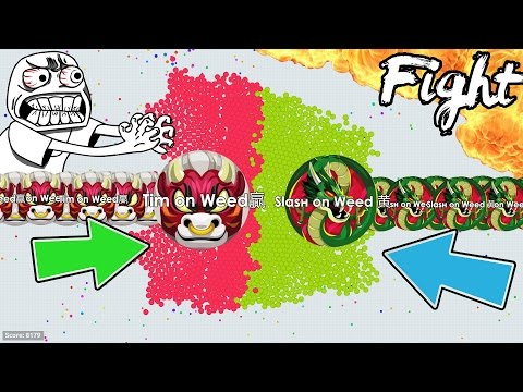 MASSIVE MASS LINESPLIT FIGHT IN AGARIO!! #FAIL LAST MAN STANDING // BEST LINESPLIT MOMENTS (Agar.io)