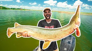 Bowfishing GIANT RIVER GAR Catch Clean Cook!!! (Lucky Shot)